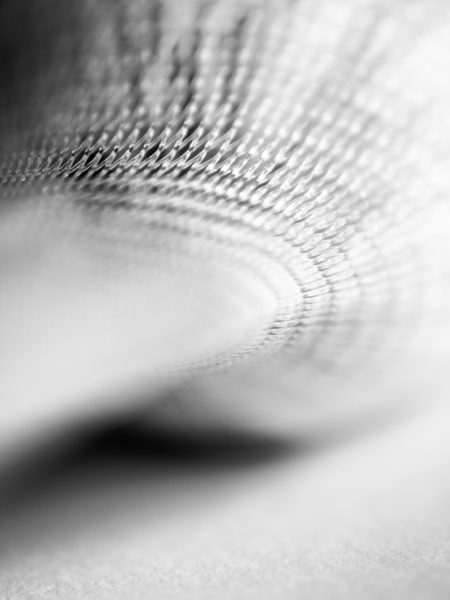 Flower encased in plastic net wrapping fine art black and white photograph